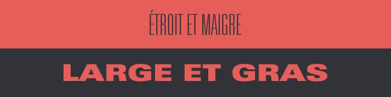 blog_la_haute_societe_typo_variantes_chasse