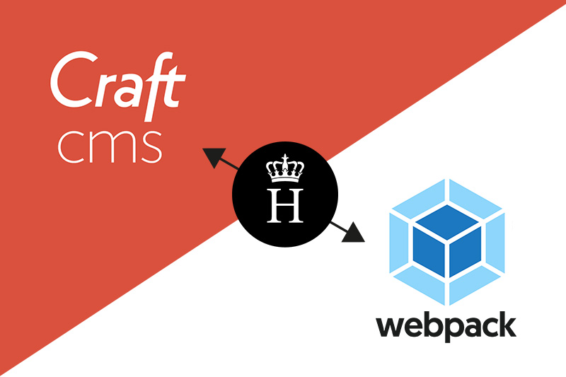 craft cms plugin webpack