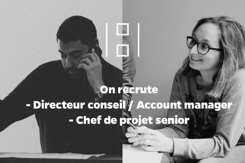recrutement agence digitale rhone alpes directeur conseil chef de projet